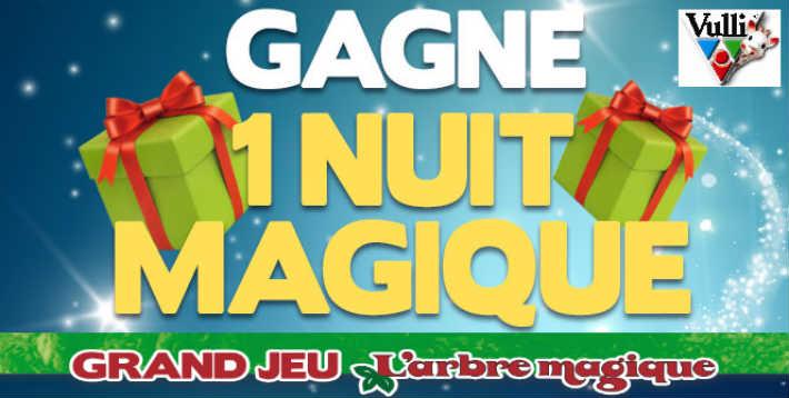 www.concours-arbre-magique.com grand jeu Arbre Magique Vulli